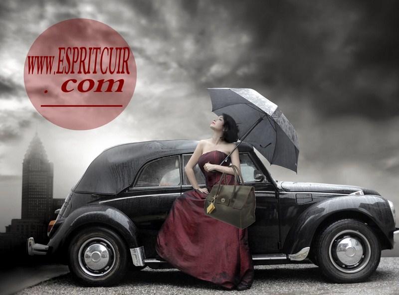 présentation blog Espritcuir